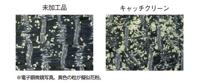 「なんとかしたい!」をニトリで解消 花粉対策まで考えた快適な春の部屋づくり_1_3