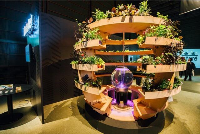 パナソニックセンター東京「AkeruE(アケルエ)」「アクアポニックス」展示イメージ