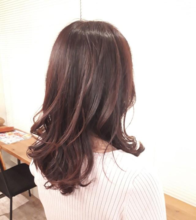 「HAIR Marisol 2020」を見て、髪のメンテナンスにGO!!_1_1
