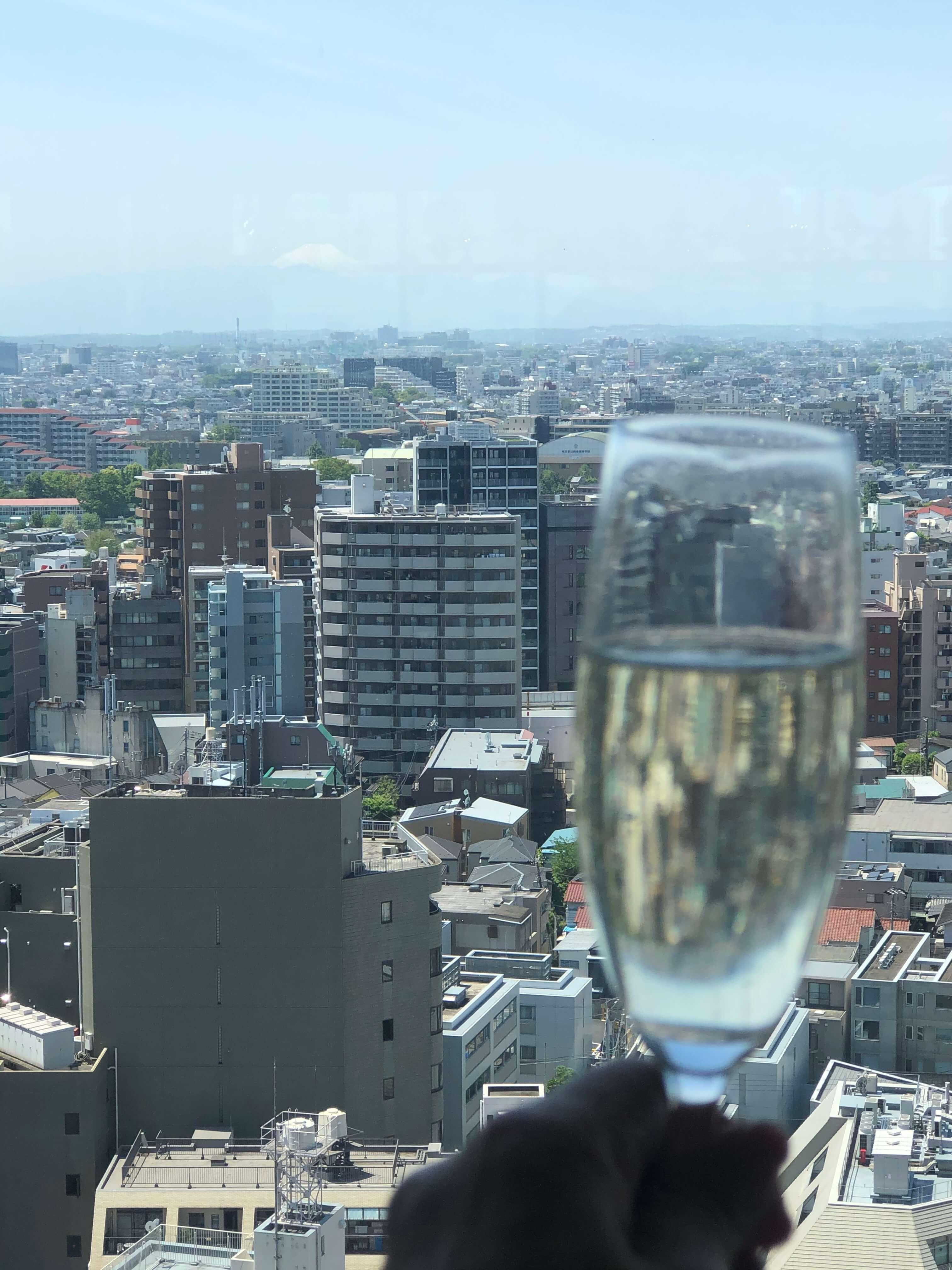 15階からの眺めのいい景色。この日はラッキーにも富士山が見えています。