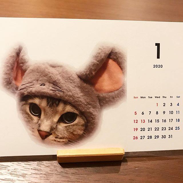 アランのカレンダーの1月はネズミのコスプレ