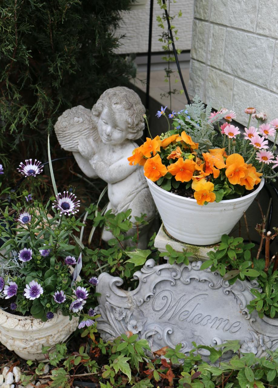 お庭のお花が満開・グリーンも綺麗!_1_3-3