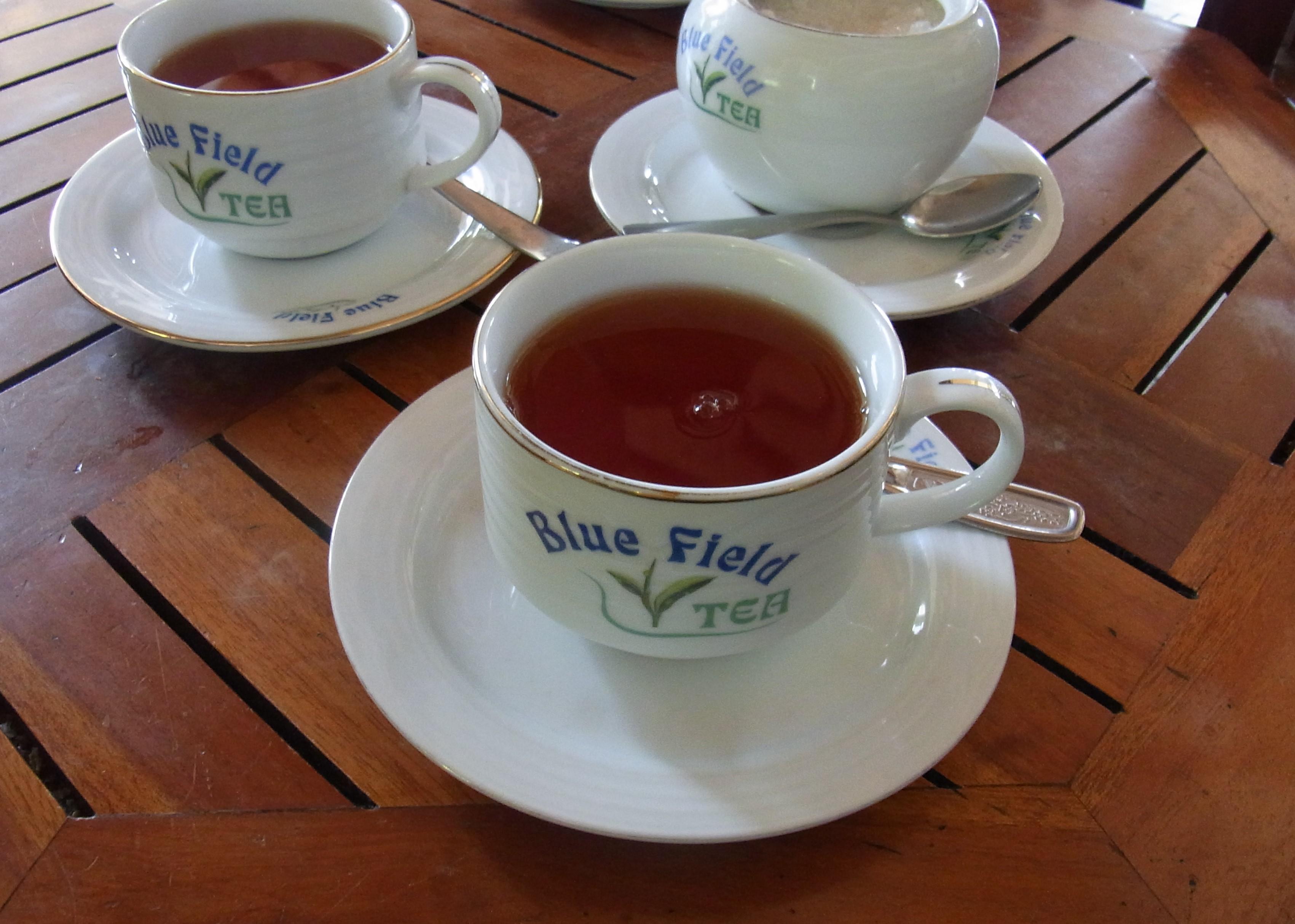 紅茶畑と工場@スリランカ_1_9