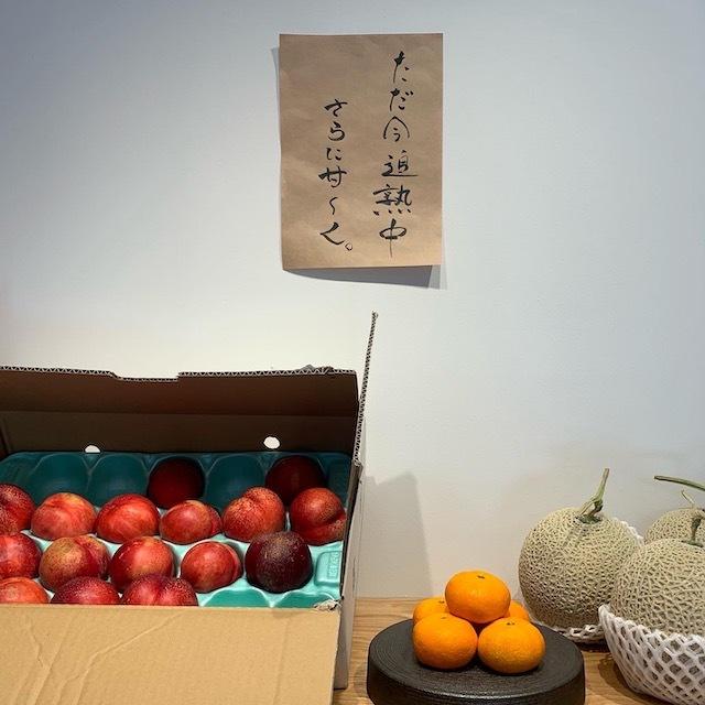 鎌倉 鎌倉グルメ 鎌倉かき氷 中町氷菓店 jマダム 鎌倉カフェ