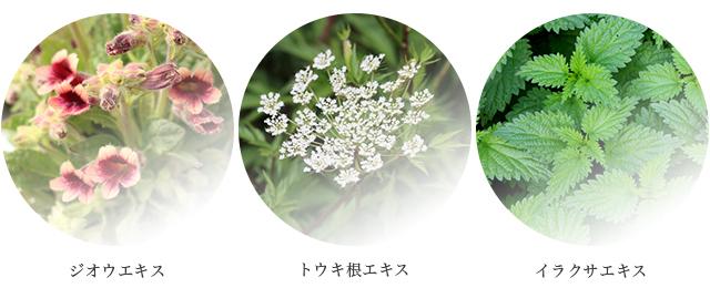 和漢植物を中心とした美容成分を配合