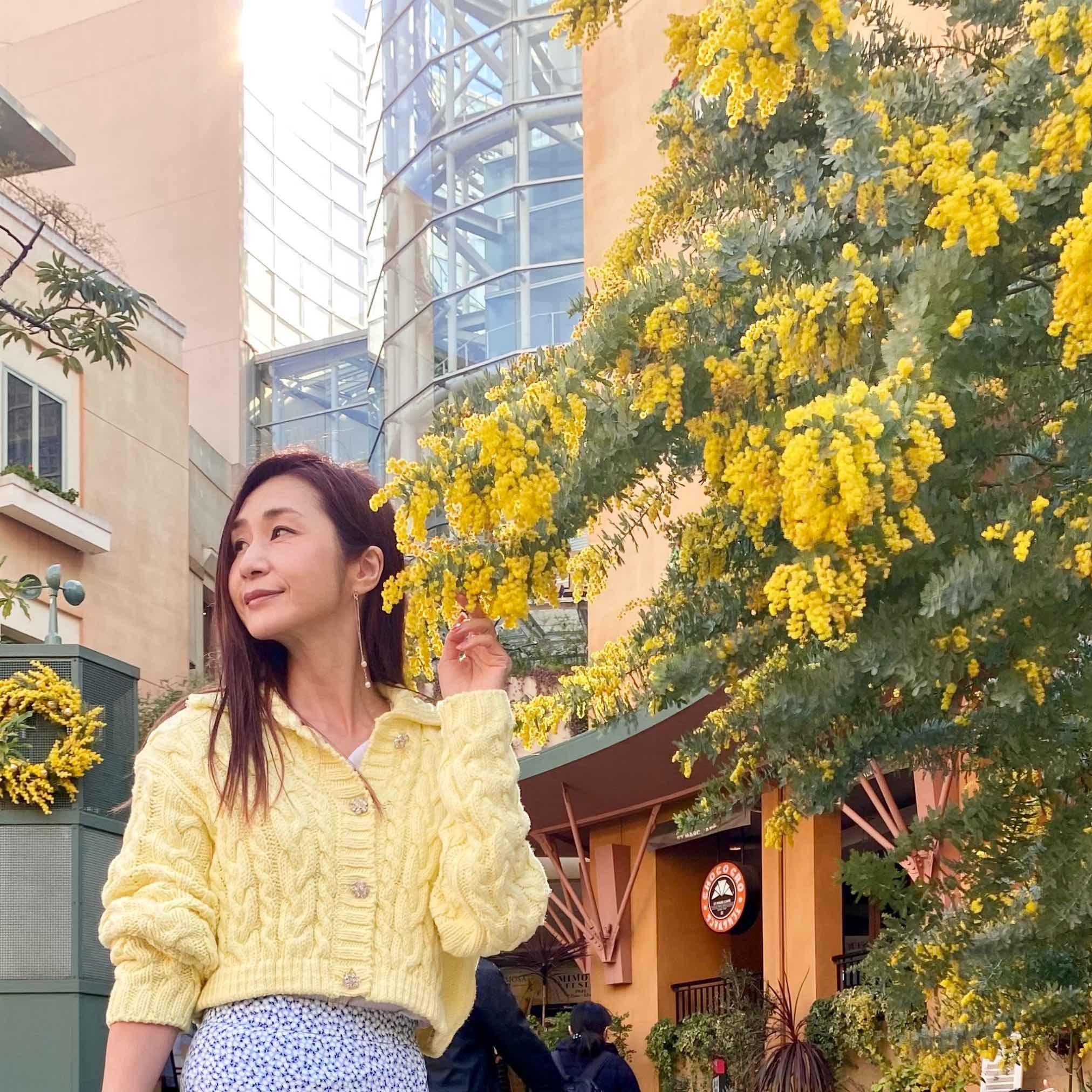 ミモザの花の下で立つ私