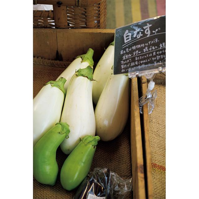 夏が旬の白ナス。若手農家が作る珍しい野菜もいろいろ