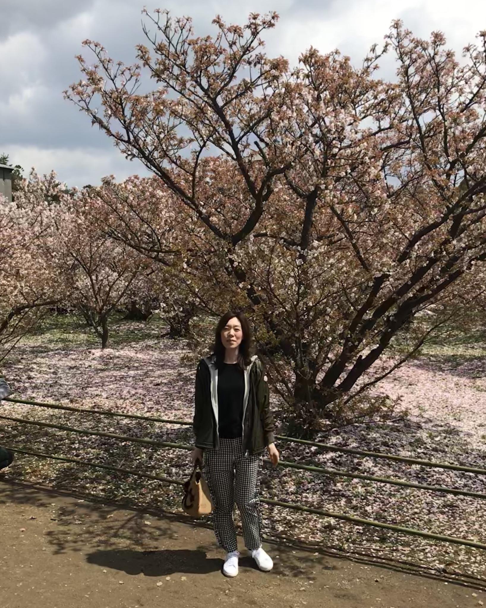 京都 仁和寺。低気温な日のお花見はパーカーが大活躍!_1_1