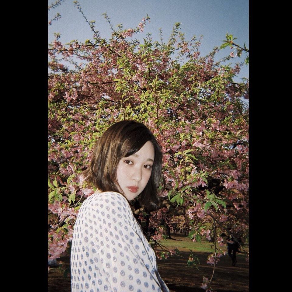 私のおすすめお花見スポット ❤︎_1_1