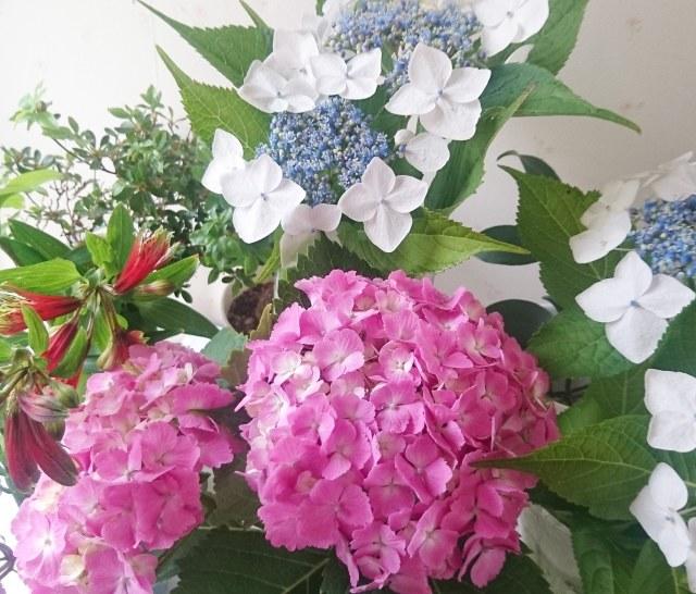 私のお花LIFE_1_1