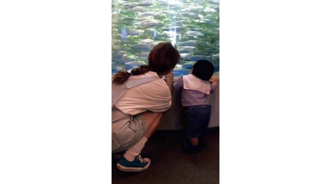 水族館がお気に入りスポット