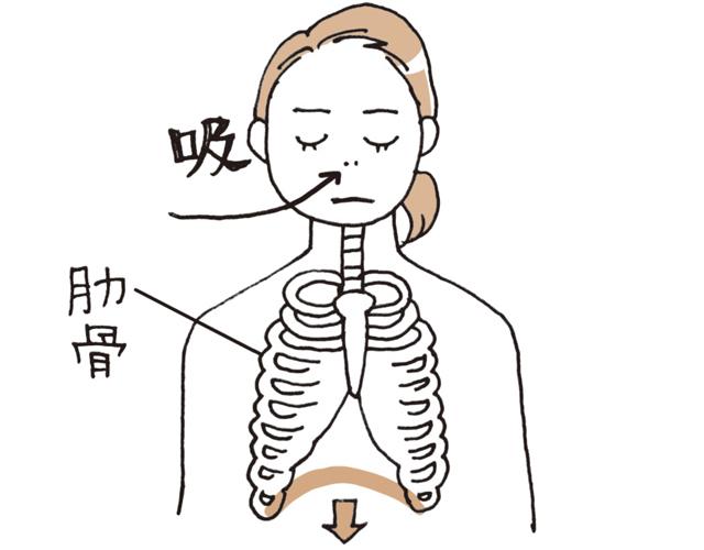 両手を肋骨のわきに当て、鼻から息を吸い、肋骨が前後左右に広がるか確認