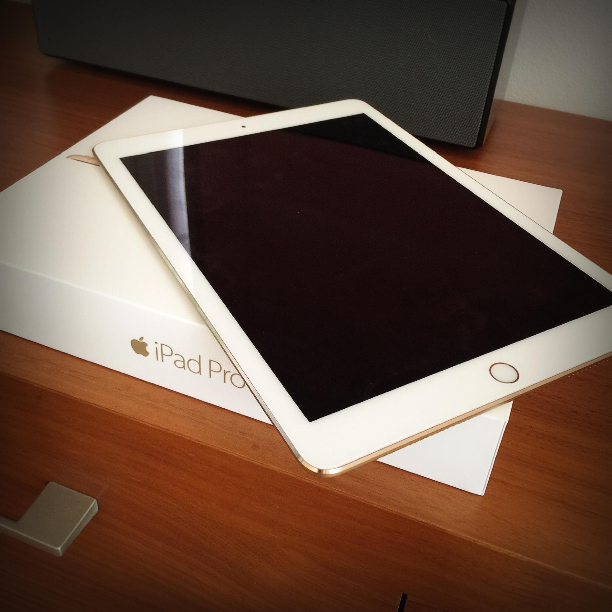 ふるさと納税で、iPad Pro ♡_1_1