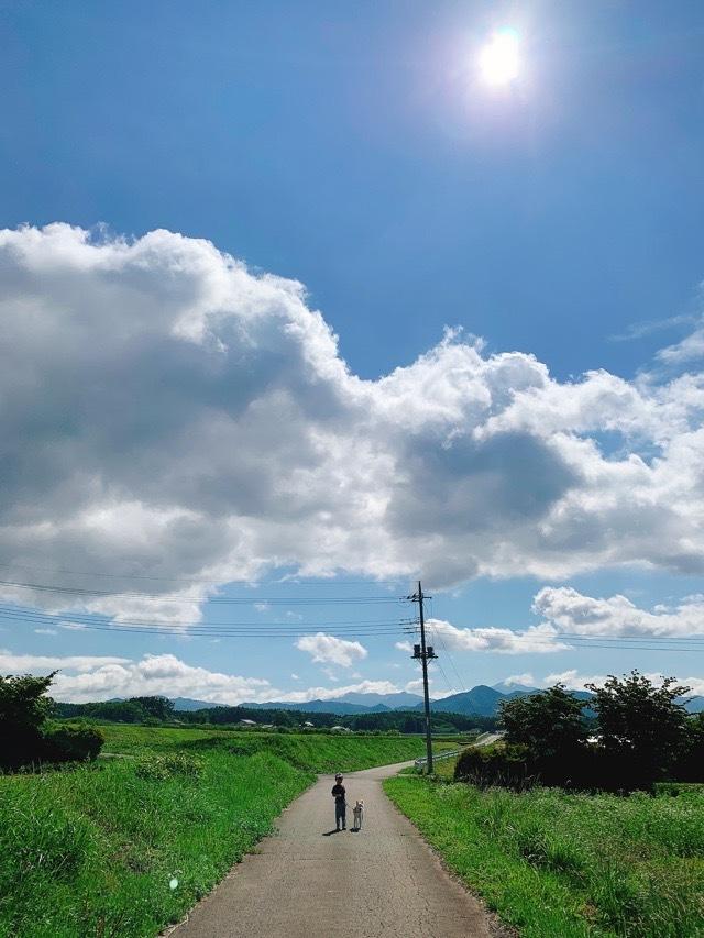 日本を楽しもう!四季の移ろいが教えてくれる真の美しさ_1_2-1