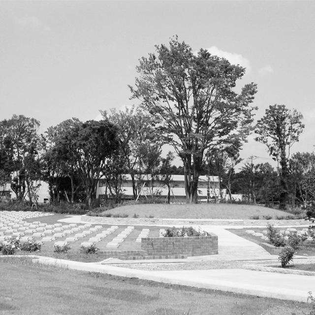 シンボルツリーや低木、芝、花などで覆われたマウンド上の区画に
