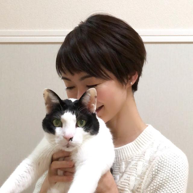 猫とヘアスナップ