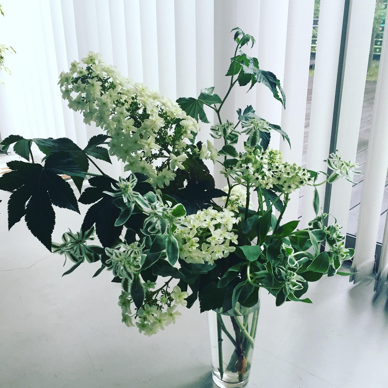 花のある暮らし_1_1