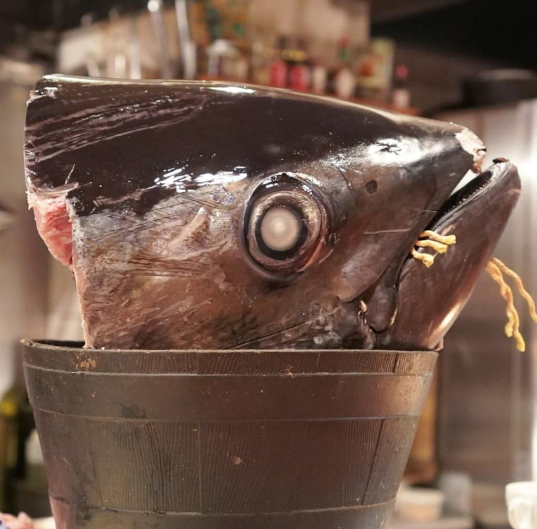 鮪がお出迎え!代官山『Äta』で魚介づくしディナー_1_1-1