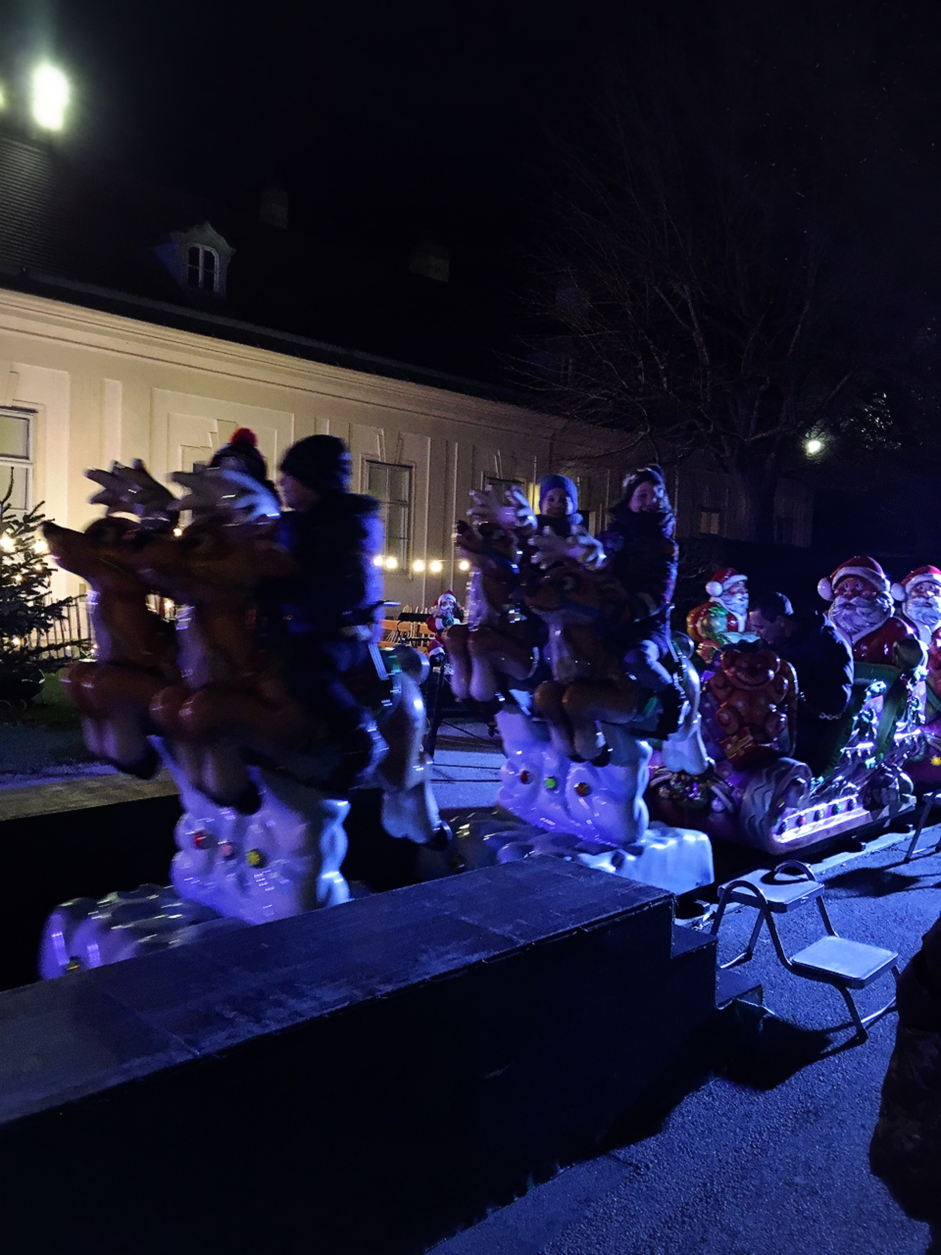 ベルベデーレ宮殿のクリスマス_1_3