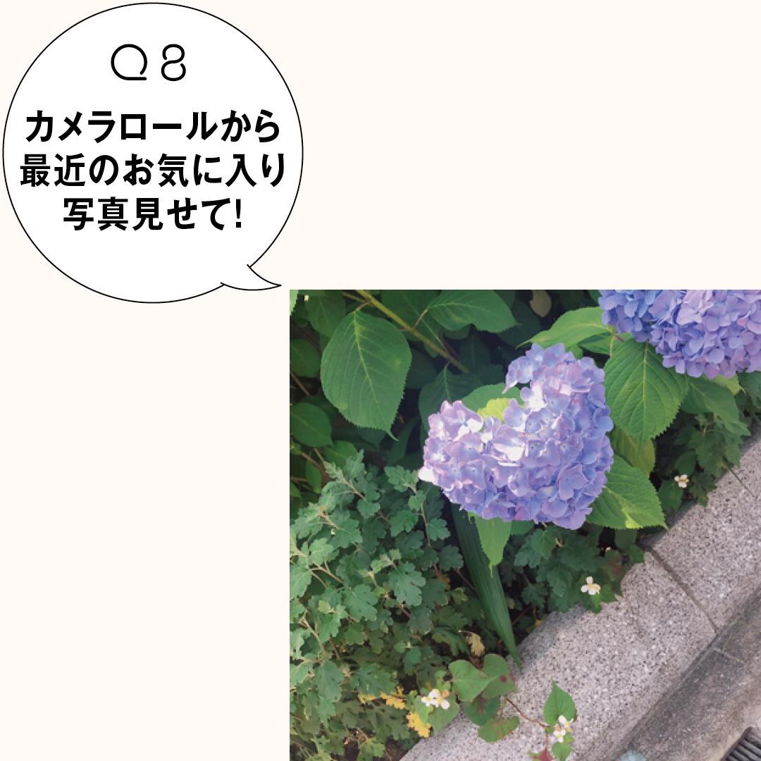 日向坂46&ノンノモデル、佐々木美玲のバッグ&スマホの中身をのぞき見!_1_2-8