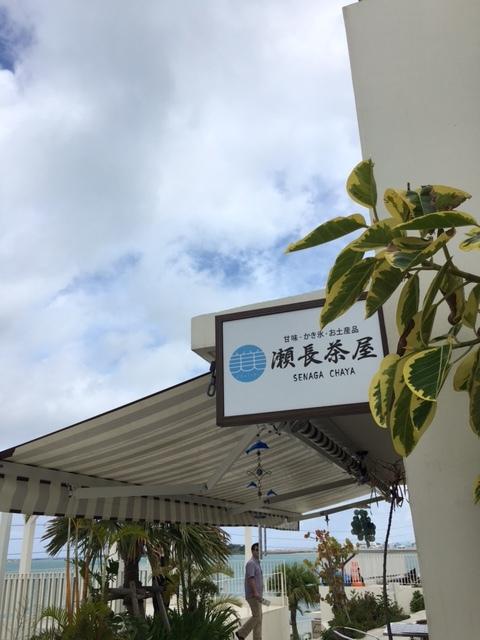 沖縄で出逢ったにゃんこ達_1_1-1