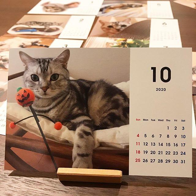 アランのカレンダーの10月はハロウィン
