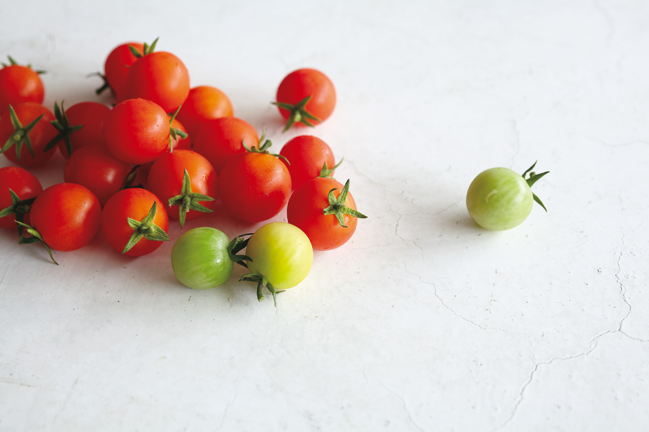 日本一との呼び声高いミニトマト「大塚ファーム」_1_1