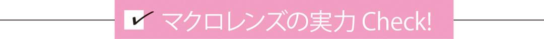 スマホレンズのマクロでインスタ映え★リップ・お花見の桜・100均もこんなに可愛く!【non-no5月号付録】_1_1