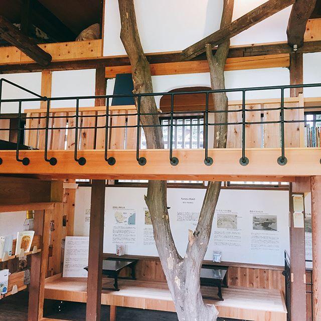 ただただぼーっとしていたい!箱根にある素敵なカフェ「NARAYA CAFE」_1_3