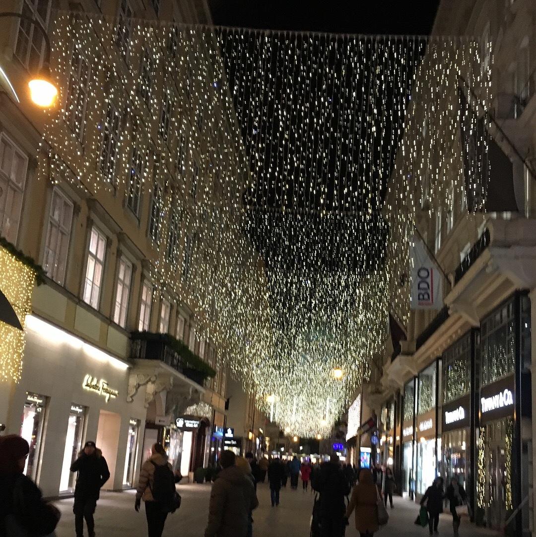 ウィーンのクリスマスマーケット_1_3