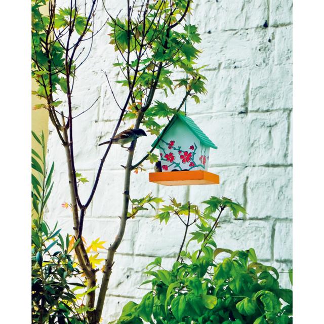 ❹設置した餌箱に餌をついばみにくるかわいい小鳥に癒されていた毎日
