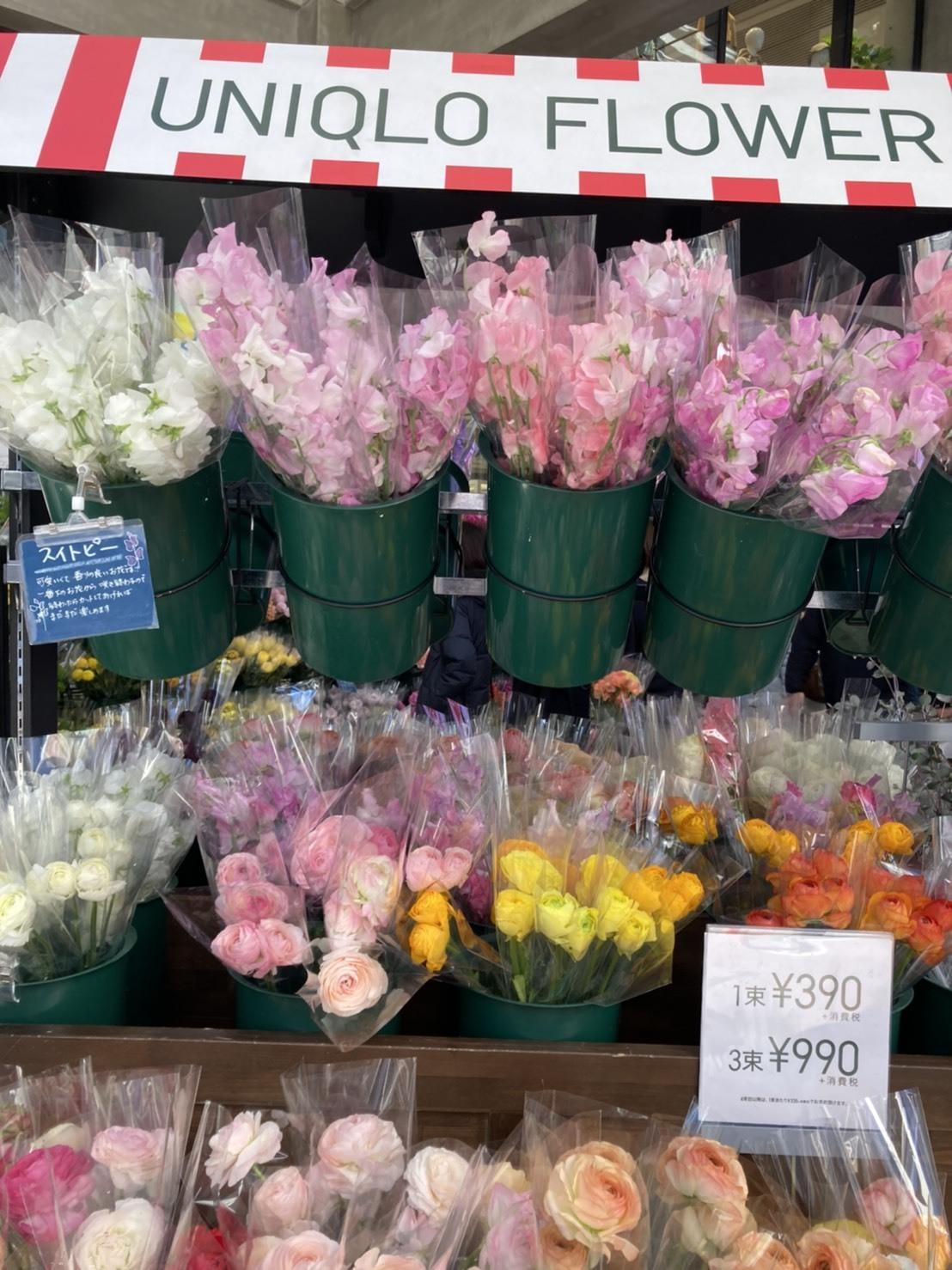 ユニクロでお花が買える!?_1_1-1