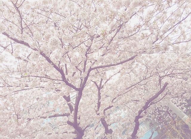 ☃春ですね♡週末の出来事☃_1_6