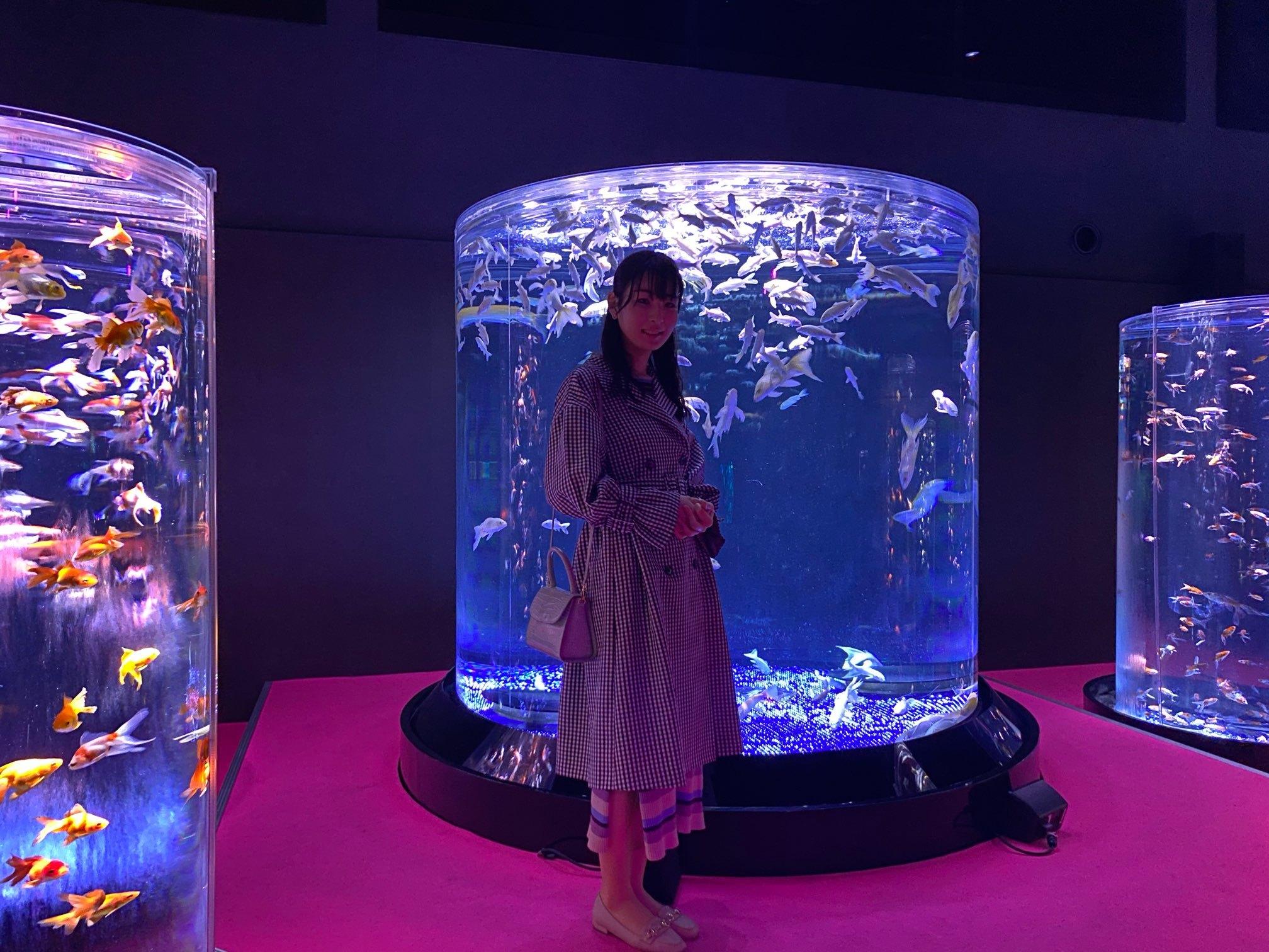 【日本橋】「アート」な水族館!?_1_2-2