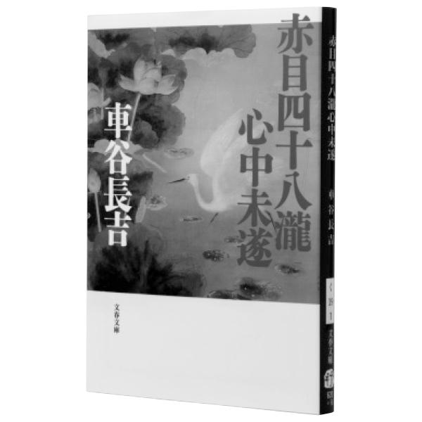 『赤目四十八瀧心中未遂』車谷長吉