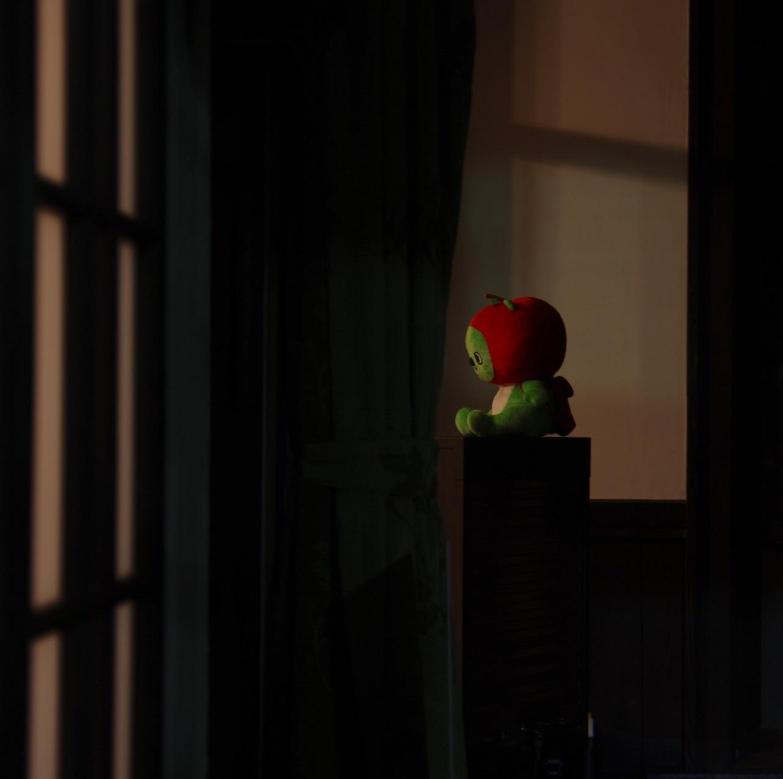フェルメール、好き嫌いを超えた視覚の喜び。_1_1-4