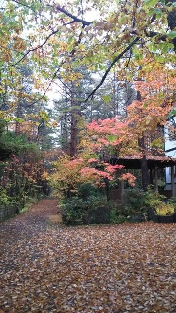 紅葉深まる、秋の軽井沢♡_1_1