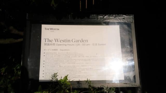 ウェスティンホテル東京「広東料理・龍天門」でラグジュアリーな女子会ランチ_1_4-1