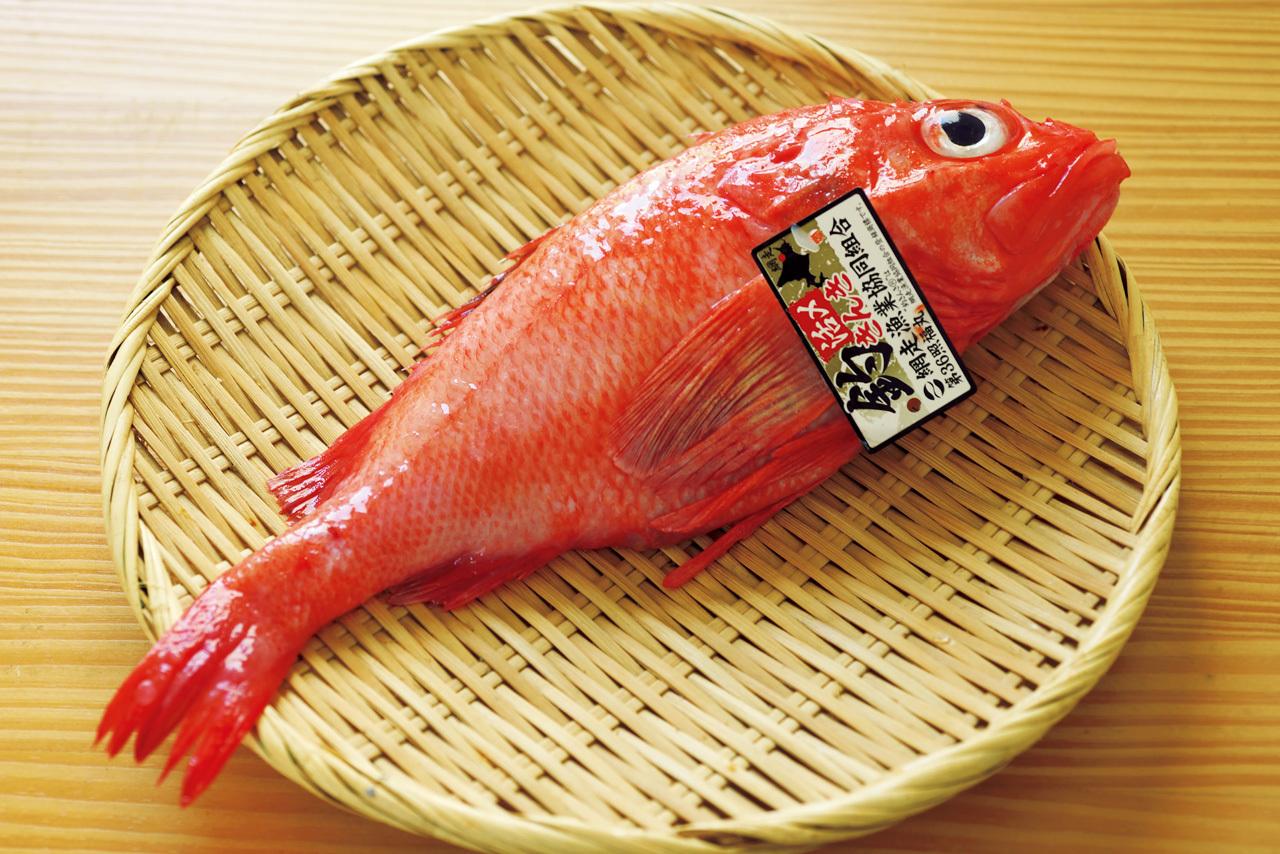 札幌で研究家肌の主人がにぎる妥協なき鮨 鮨 一幸_1_5-1
