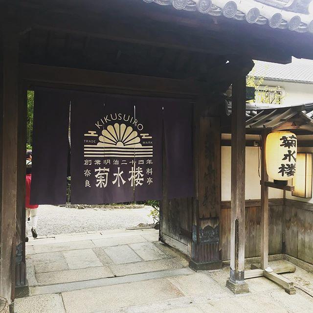 癒しの女子旅、悠久の都「奈良」へ行ってきました♪おすすめランチはこちら!_1_1