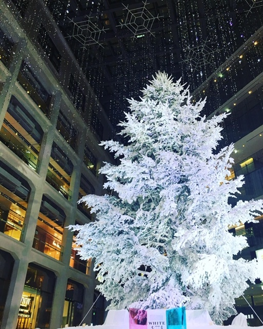 丸の内「KITTE」白銀のクリスマス