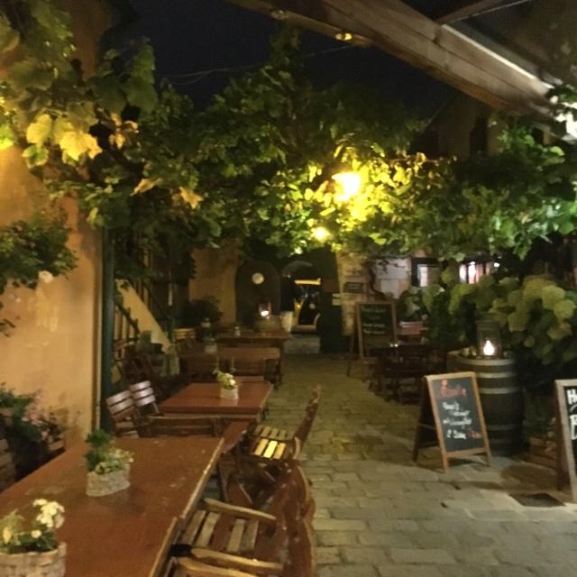 ホイリゲ: ぶどうの木の下でワイン!
