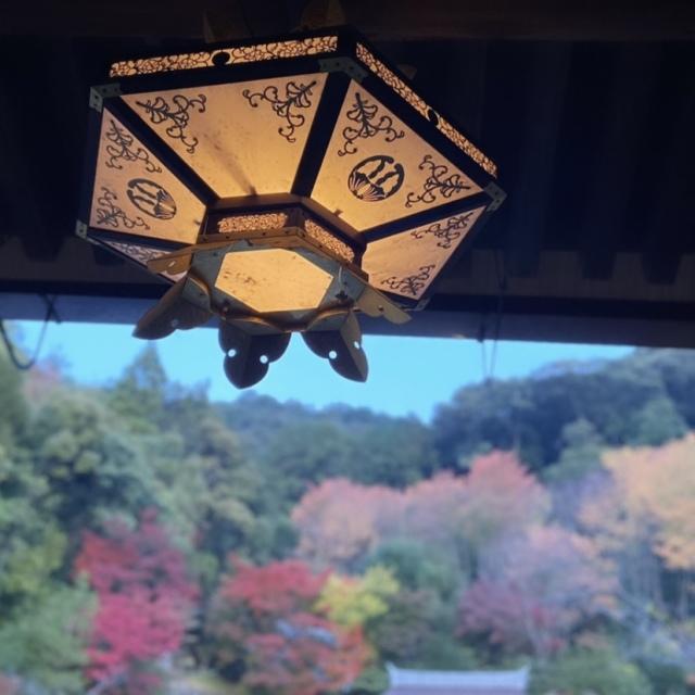 感染症対策しながらGoToトラベルで京都へ_1_4
