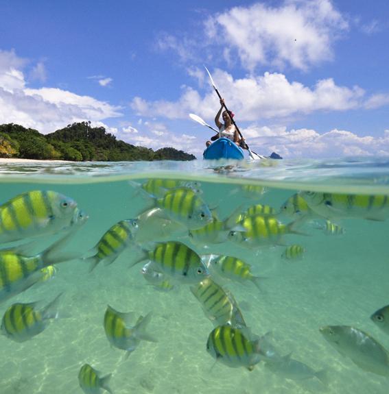 タイビーチのビーチを楽しむ、離島のホテル5選(リペ/クラダン/サメット/パンガン/チャン) _2_1