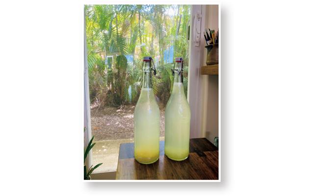 ブレンダのハワイ生活 必ず飲んでいるのがレモンウォーター