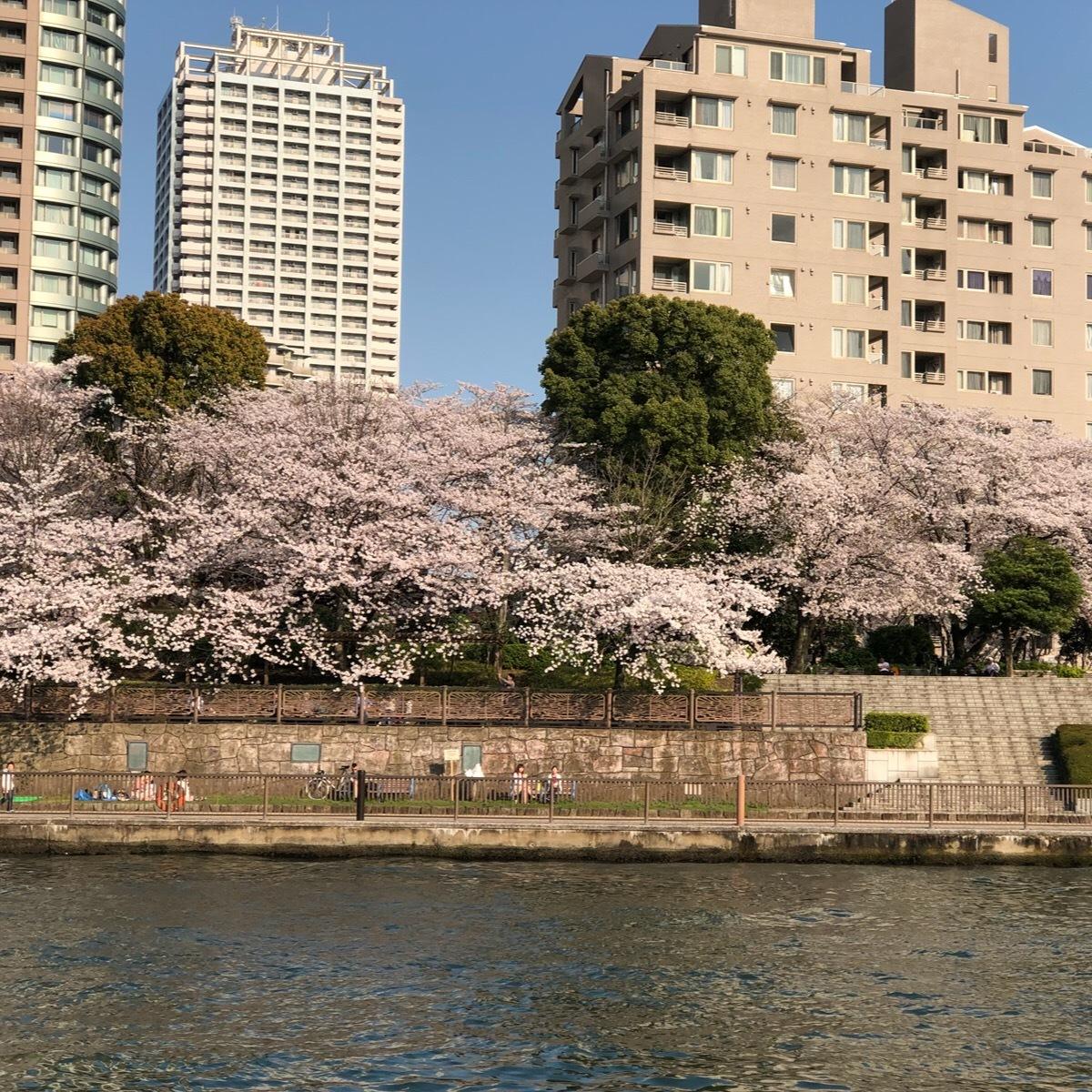 春の浅草_1_4-1