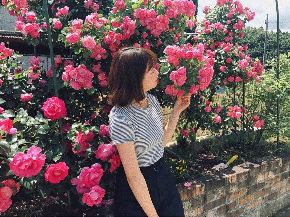 pink make_1_1