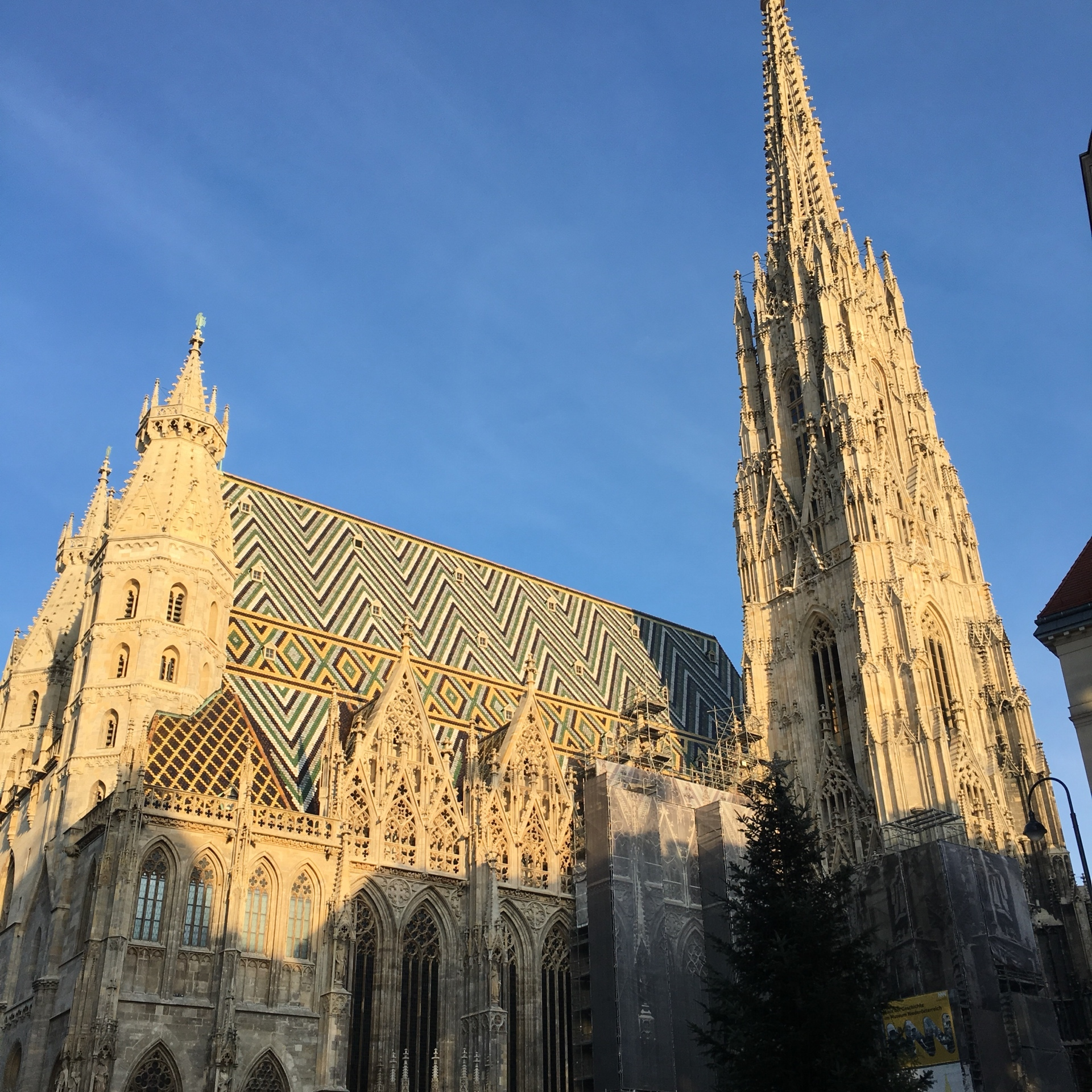 ウィーンのクリスマスマーケット_1_6