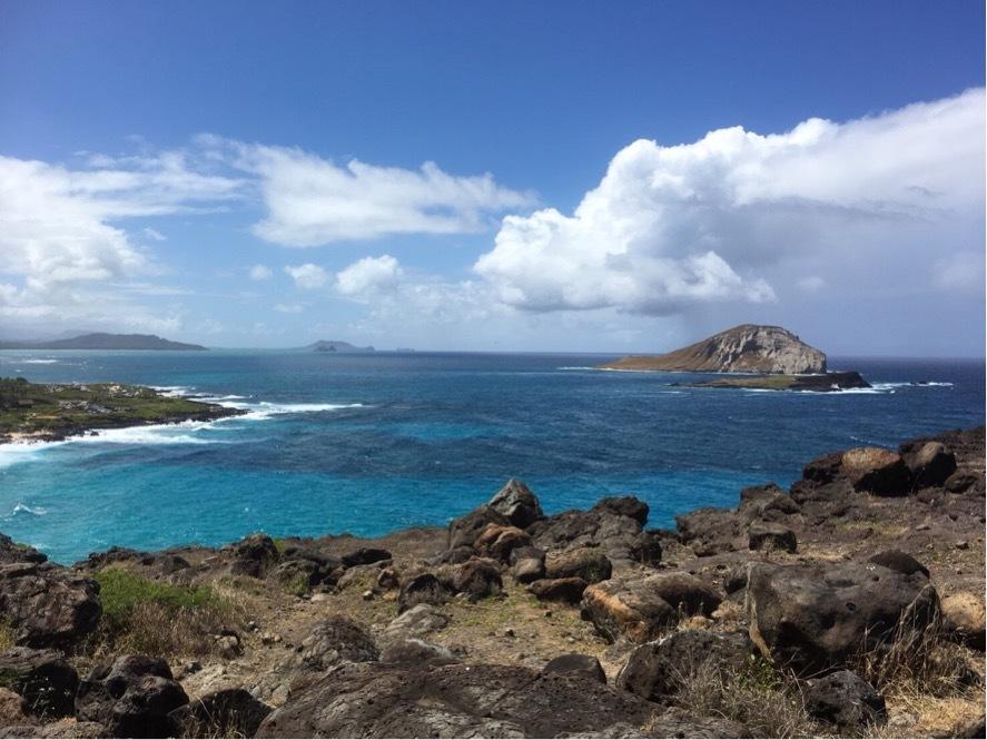 久しぶりにハワイへ♪_1_4-2