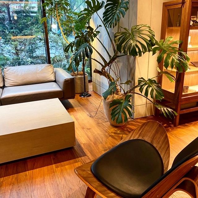 【1万円以下の東京ステイ】デザイナーズホテルがアツい!_1_3-2